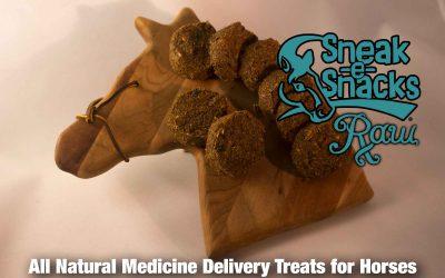 Sneak-e-Snacks RAW Medicine Delivery Treats