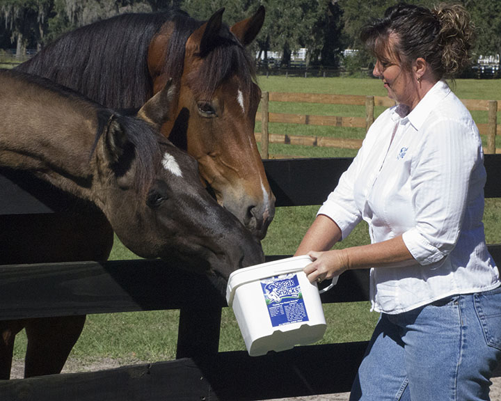 Everyone loves Sneak-e-Snacks-FeedingTreatsBucket