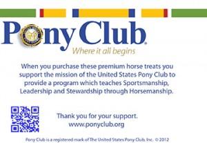 pony-club-6