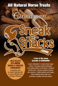all-natural-horse-treats-cinnamon
